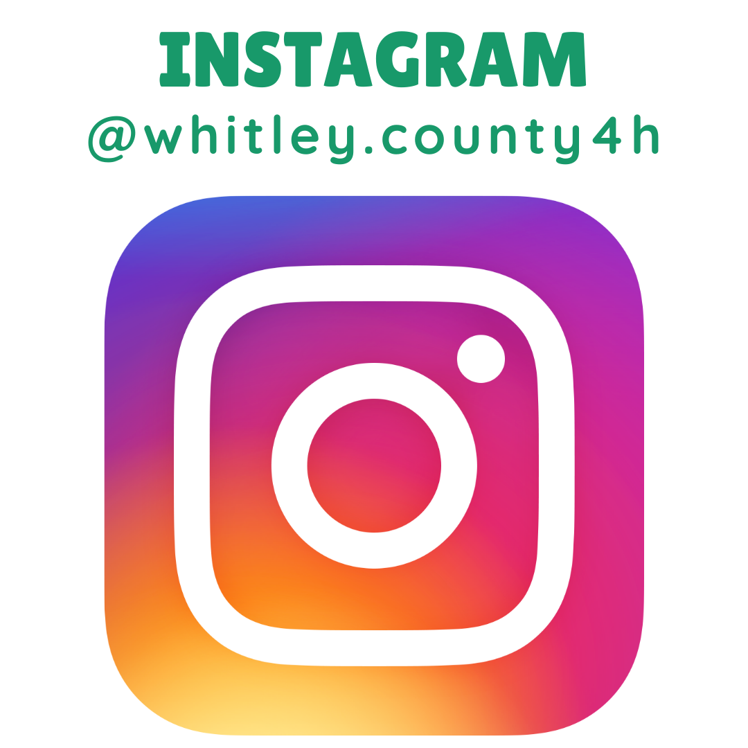 Whitley County 4-H Instagram