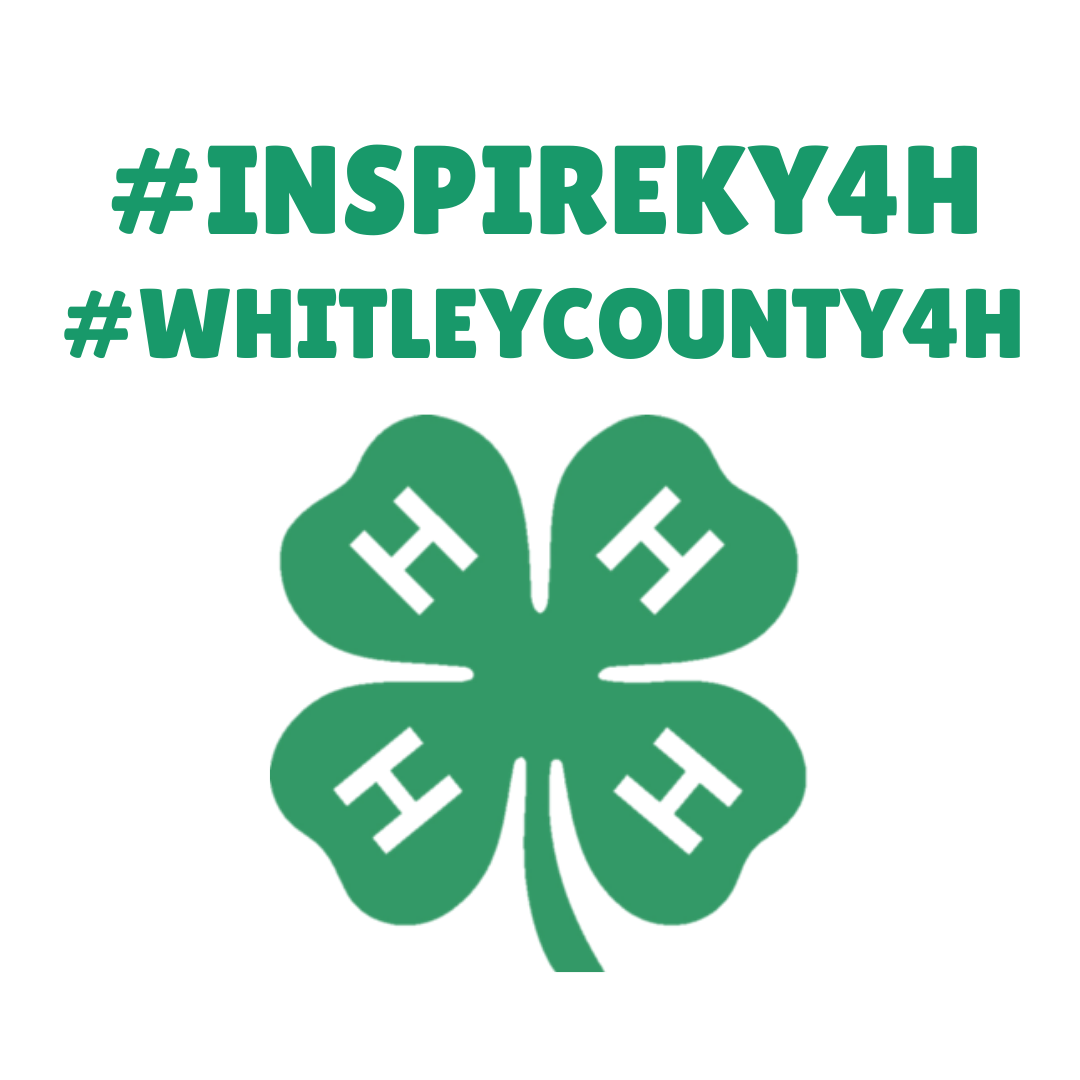 4-h hashtags inspire kids to do, whitely county 4-h