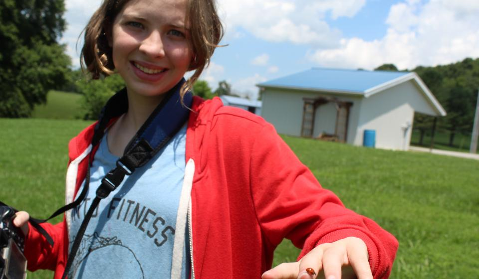 Youth learned about photography and entomology.